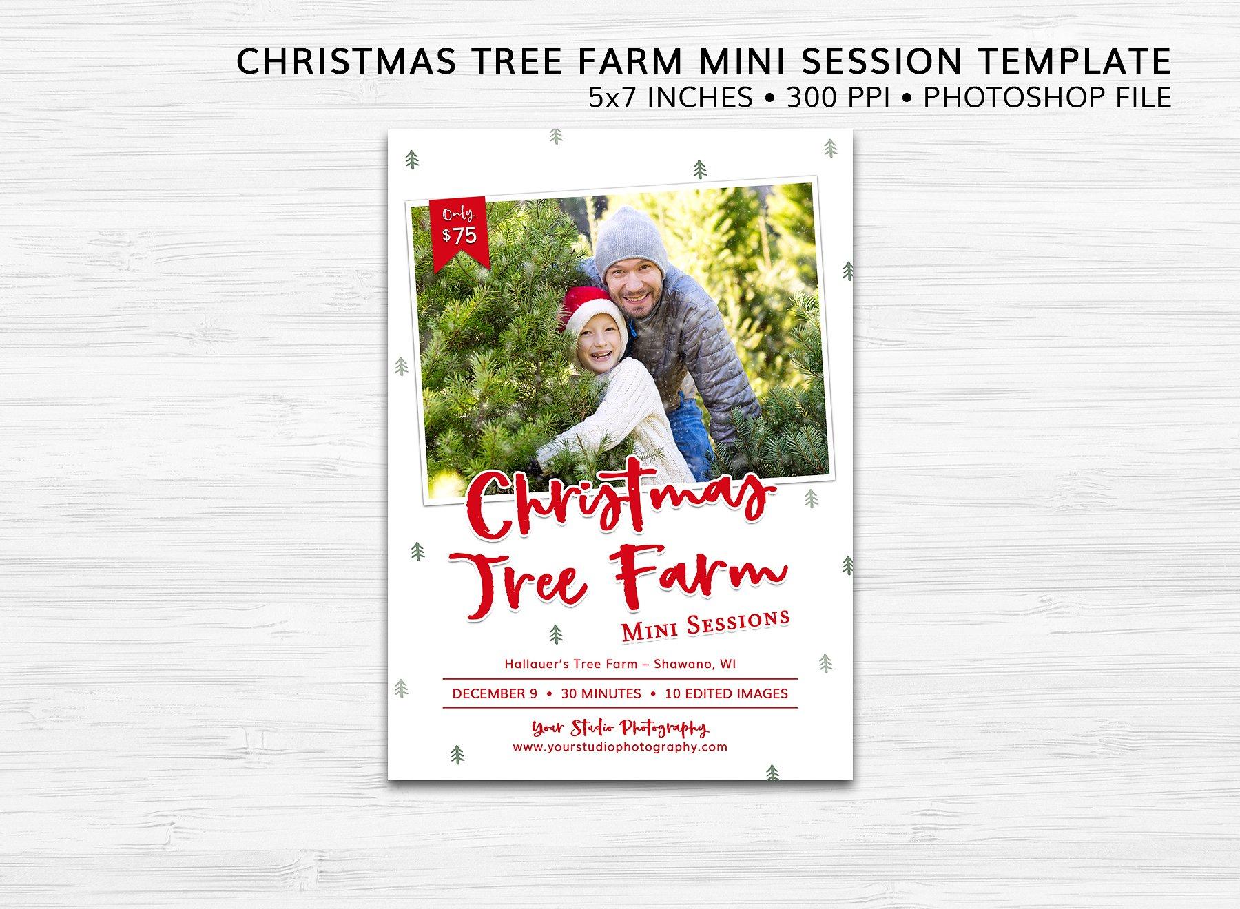 Christmas Tree Farm Mini Session Psd Flyer Template Stockpsd