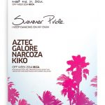 Palms Summer Flyer – Free PSD Flyer