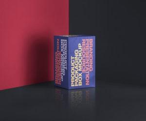 Packaging Rectangular Box Free Mockup