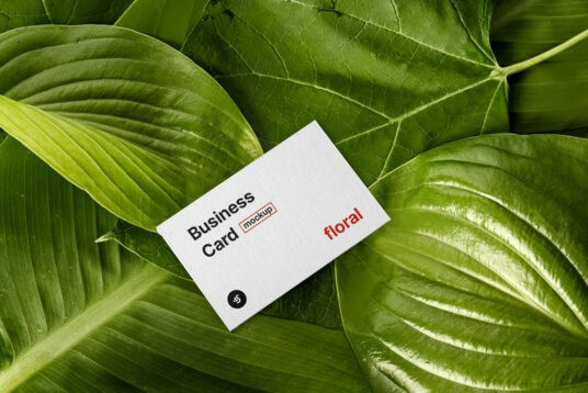 Plants and Business Card Free Mockup