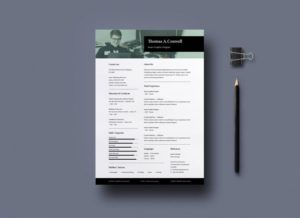 Classic Resume Free InDesign Template