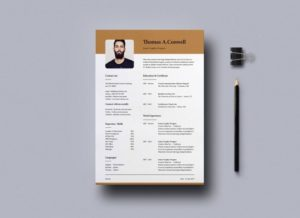Modern Resume Free Template for InDesign