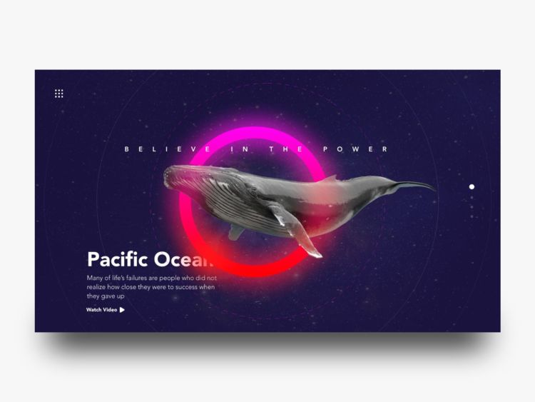 Whale - Free Landing Page XD Concept