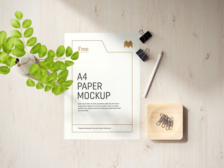 Free A4 Flyer with Scene Free Mockup