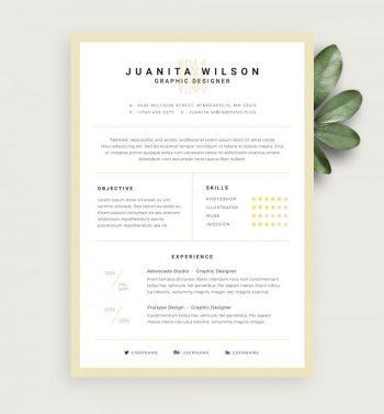 Graphic Designer Resume Free Template (PSD)