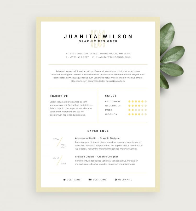 Graphic Designer Resume Free Template (PSD)