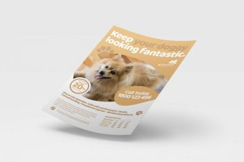 Pet Service Free PSD Flyer Templates Pack