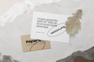 Postcard & Card Free Mockup