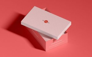 Free Shoe Box Packaging Mockup (PSD)