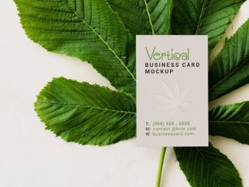 2 Free Business Card Mockup