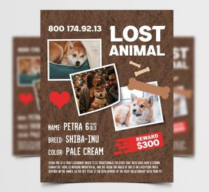 Lost Animal Free Flyer Template (PSD)
