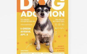 Dog Adoption Free Flyer Template (PSD)