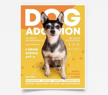 Dog Adoption Free Flyer Template (PSD)