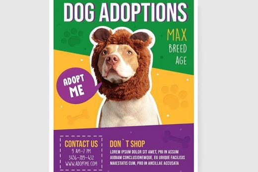 Dog Adoptions Business Free Flyer Template (PSD)