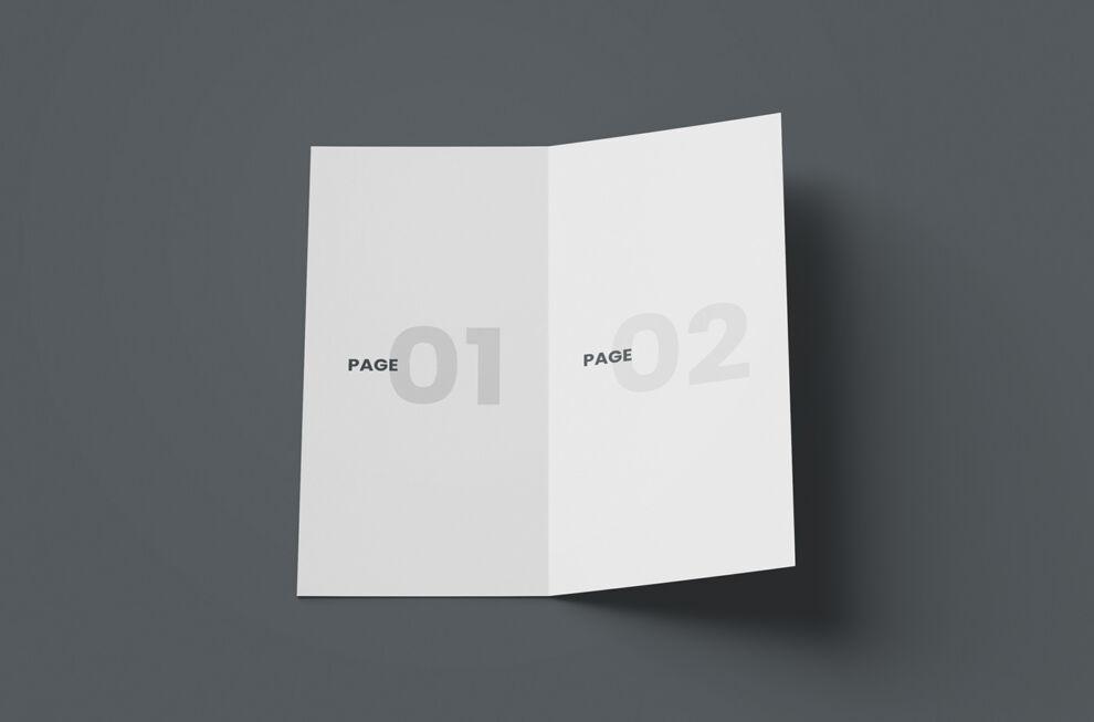 Open DL Bi-Fold Brochure Free Mockup