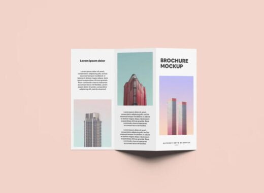 Standing Tri-Fold Brochure Free Mockup